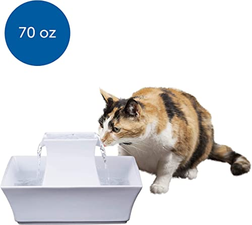 PetSafe-Cat-and-Dog-Water-Fountain