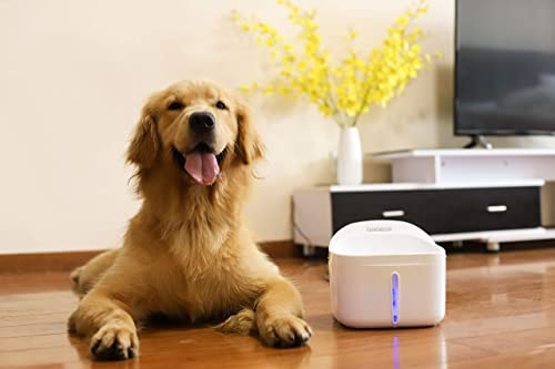 Dogness-Pet-Fountain-Dog-Water-Dispenser-Healthy