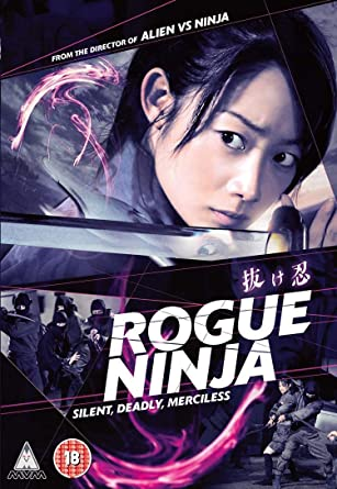 Rogue Ninja [Edizione: Regno Unito] [Italia] [DVD]: Amazon ...