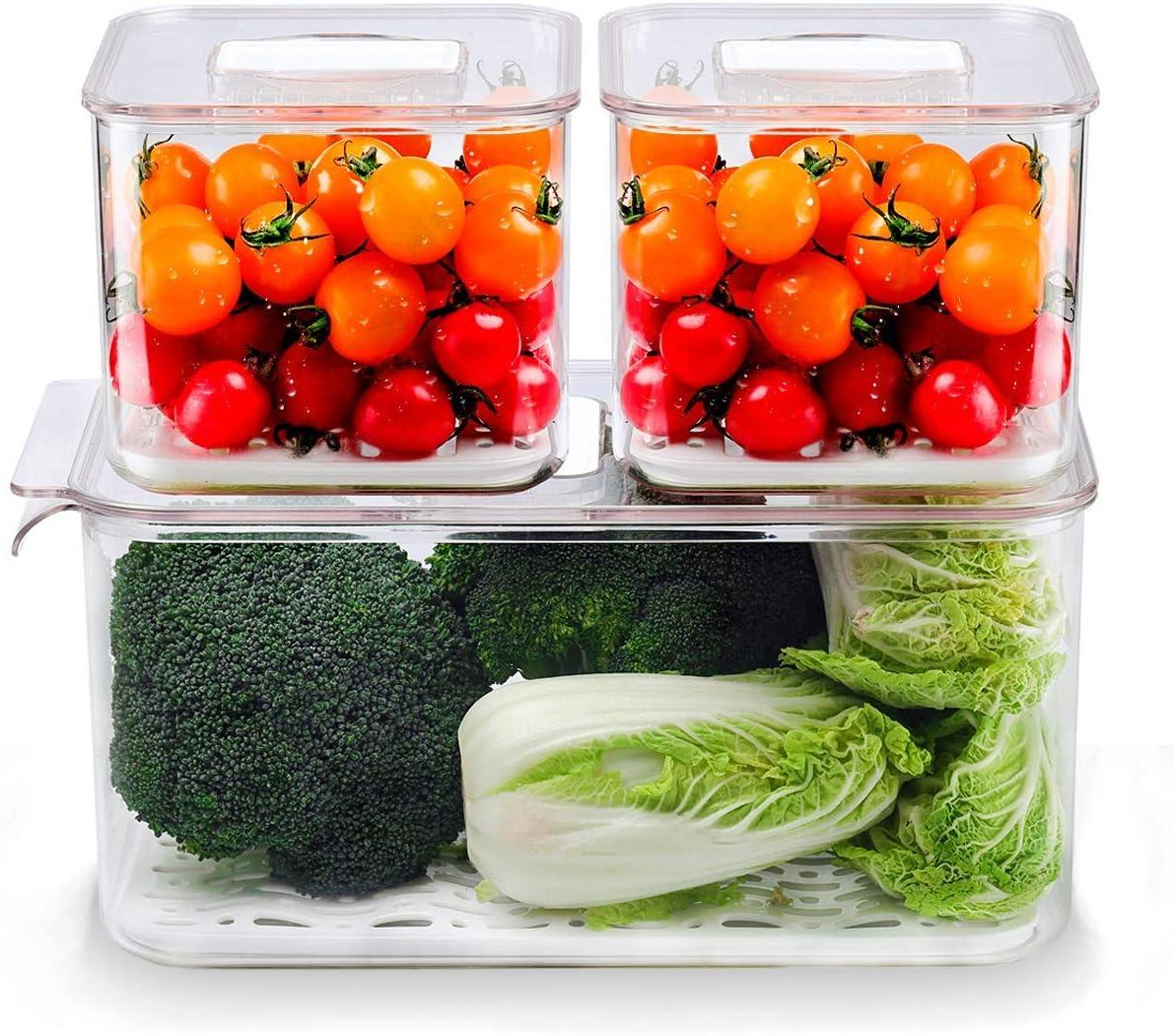 AJY Food Storage Containers,Fridge Produce Saver,Fresh Vegetable Fruit Storage Keeper,BPA-free Fridge Storage Container, (Set of 3)