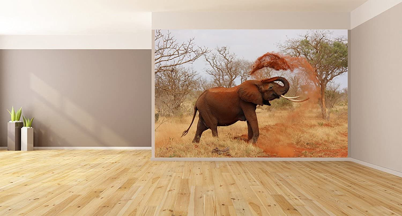 Amazon Com African Elephant Removable Wallpaper Wall Decor Custom Design Wall Mural 144 X96 Home Kitchen