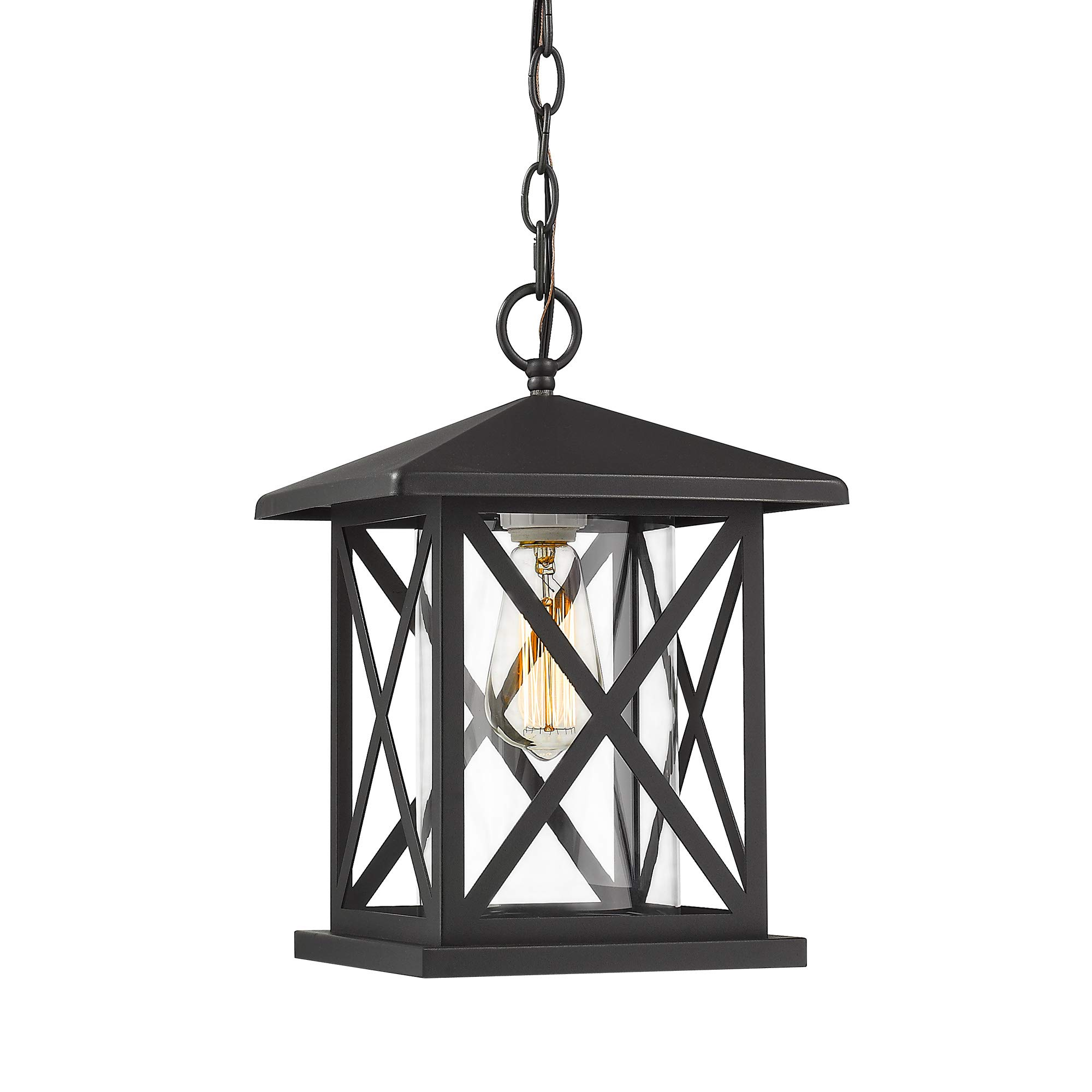 Jazava Exterior Hanging Lantern, 1-Light Outdoor Pendant Lighting for Entrance, Height Adjustable, Matte Black Finish with Clear Glass, Big
