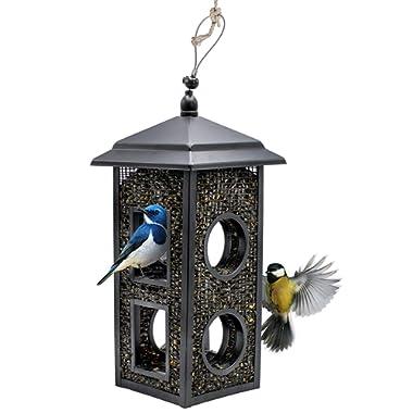 Sorbus Bird Feeder – Birdhouse Lantern Style Hanging Wild Bird Feeder, Premium Black Iron Design with Hanger, Great for Attracting Different Types of Birds Outdoors, Backyard, Garden, (Lantern Style)