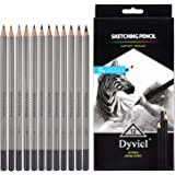 Dyvicl Professional Drawing Sketching Pencil Set - 12 Pieces Drawing Pencils 10B, 8B, 6B, 5B, 4B, 3B, 2B, B, HB, 2H, 4H, 6H G