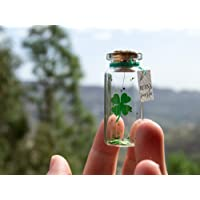 Trébol buena suerte Mensaje en una botella. Miniaturas. Regalo personalizado. Divertida postal motivación.