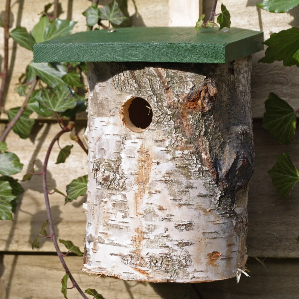 Birch Log Nest Box for Birds 32mm Hole Size *FSC Cj wildlife