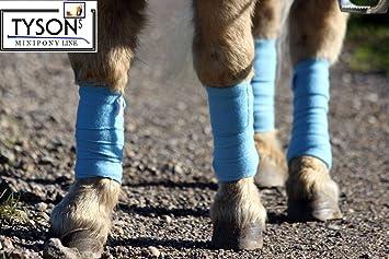 Bandagen Fleece Sehnenschoner Mini Shetty Beinschutz hellb azur 4Stück Western