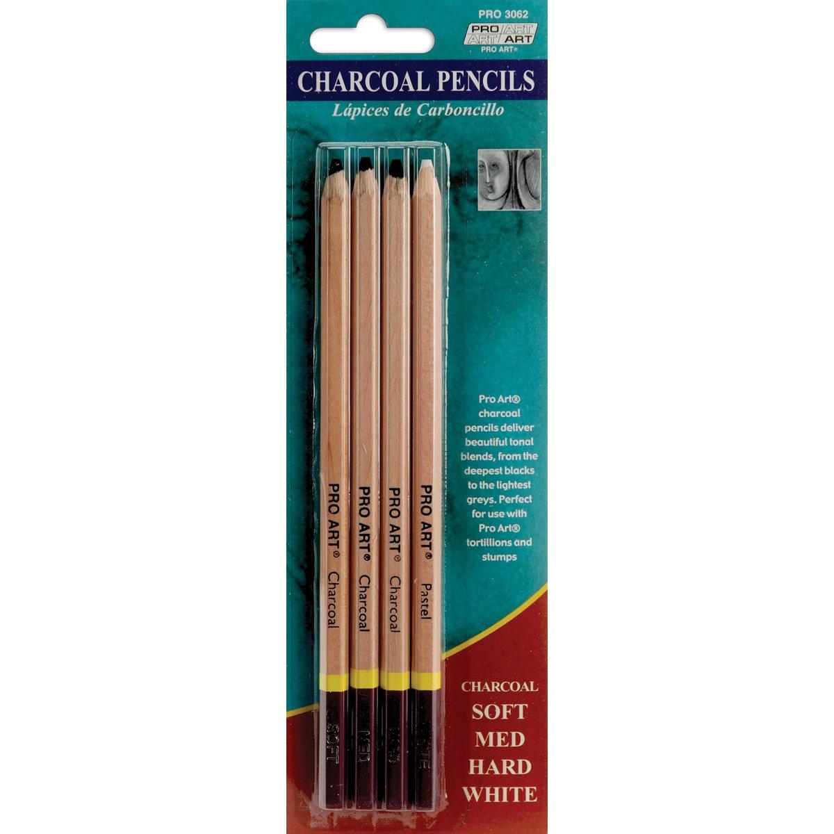 Pro Art de crayons de charbon de bois