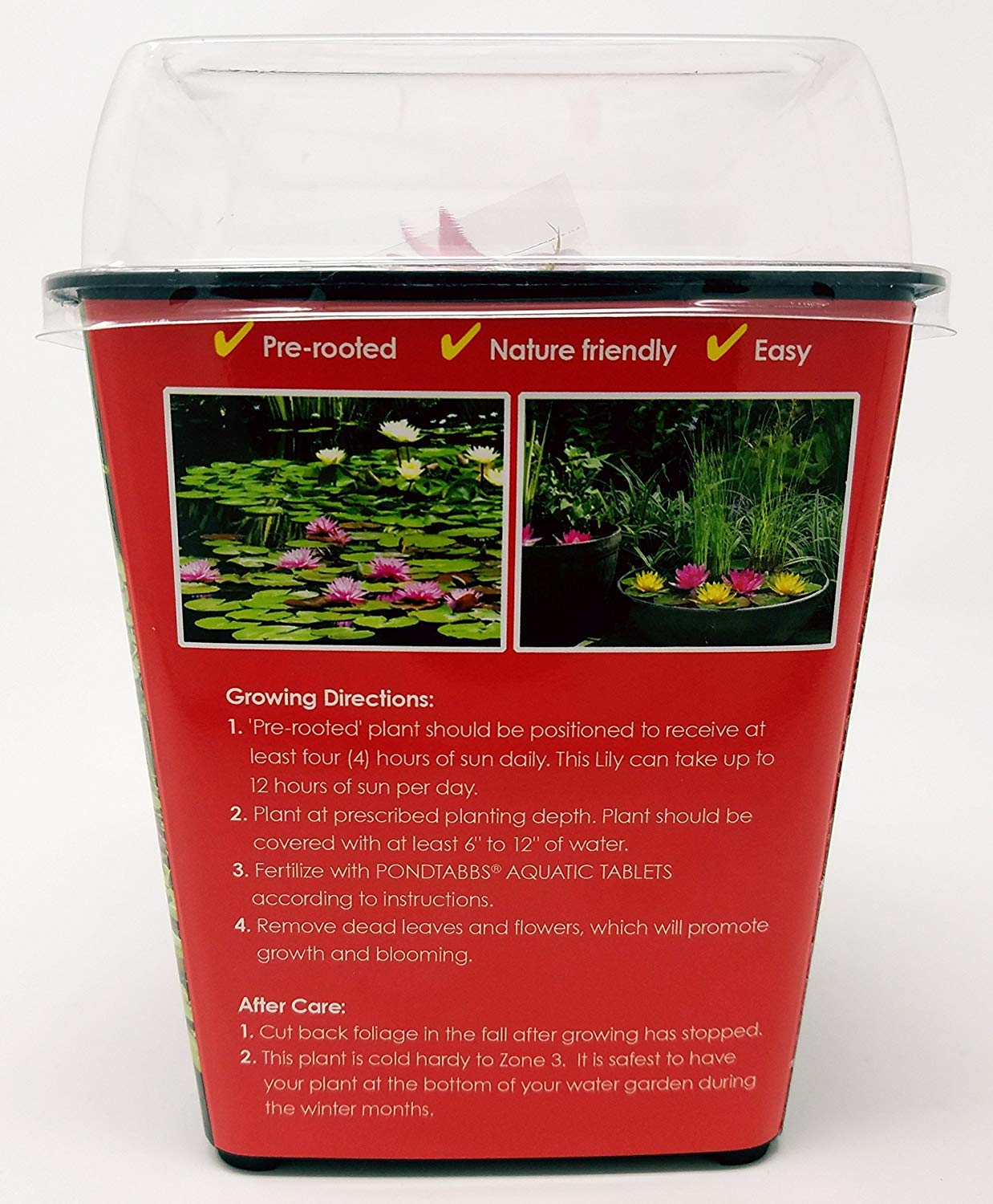 Live Water Lilies | Pre-Grown Hardy Lilies in White, Red, Yellow, Pink (Red) by AqualLeaf Aquatics (Image #1)
