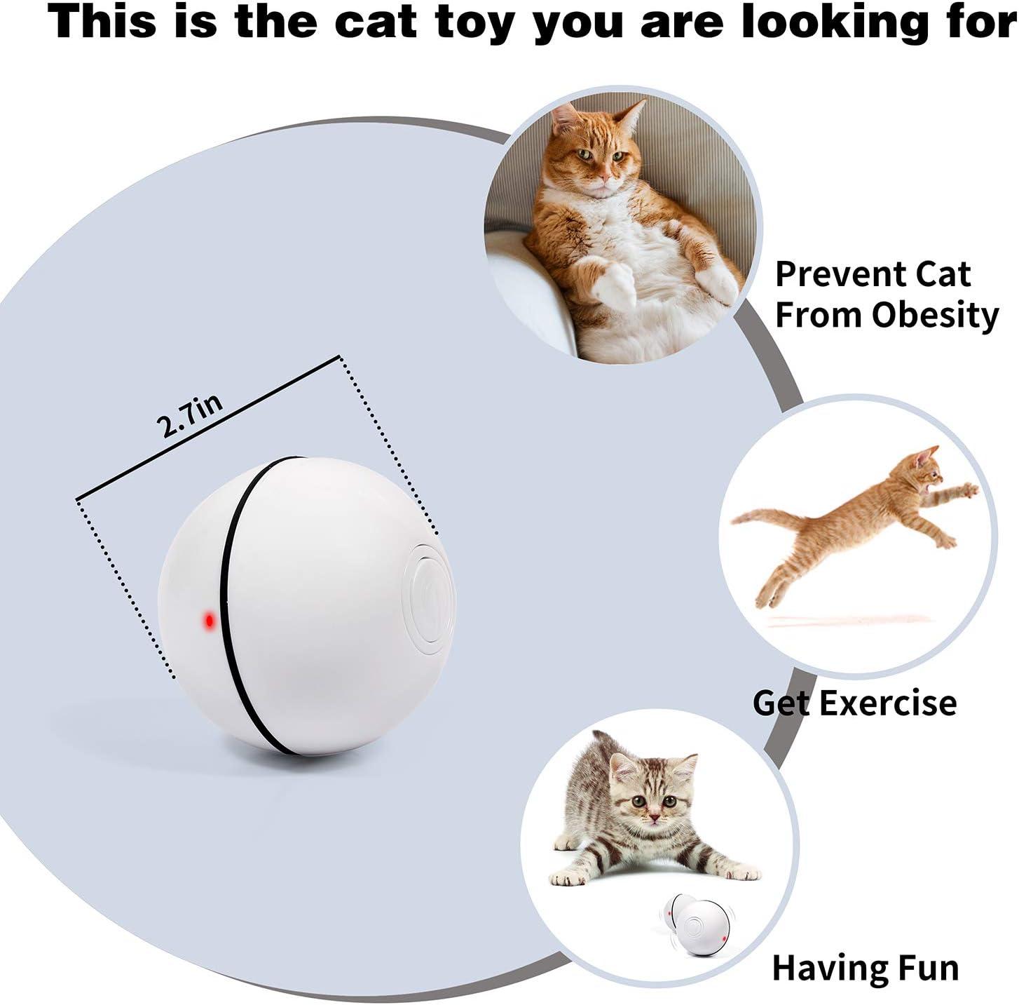NA Ldawy Juguetes para gatosJuego de Juguetes interactivos para Gatos Que Incluye Hairball Funny Cat Stick Rainbow Cat Tunnel para Gatos Interiores