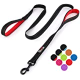 Primal Pet Gear Dog Leash 6ft Long - Traffic Padded Two Handle - Heavy Duty - Double Handles Lead for Control Safety…
