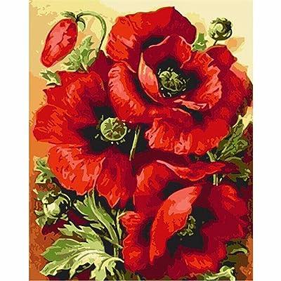 Bricolage peinture huile par numéro de peinture numérique,Kit,Suite pour les enfants, les étudiants, les adultes débutants avec Pinceaux et pigments acrylique,Wall Art-big band,Fleur rouge avec cad