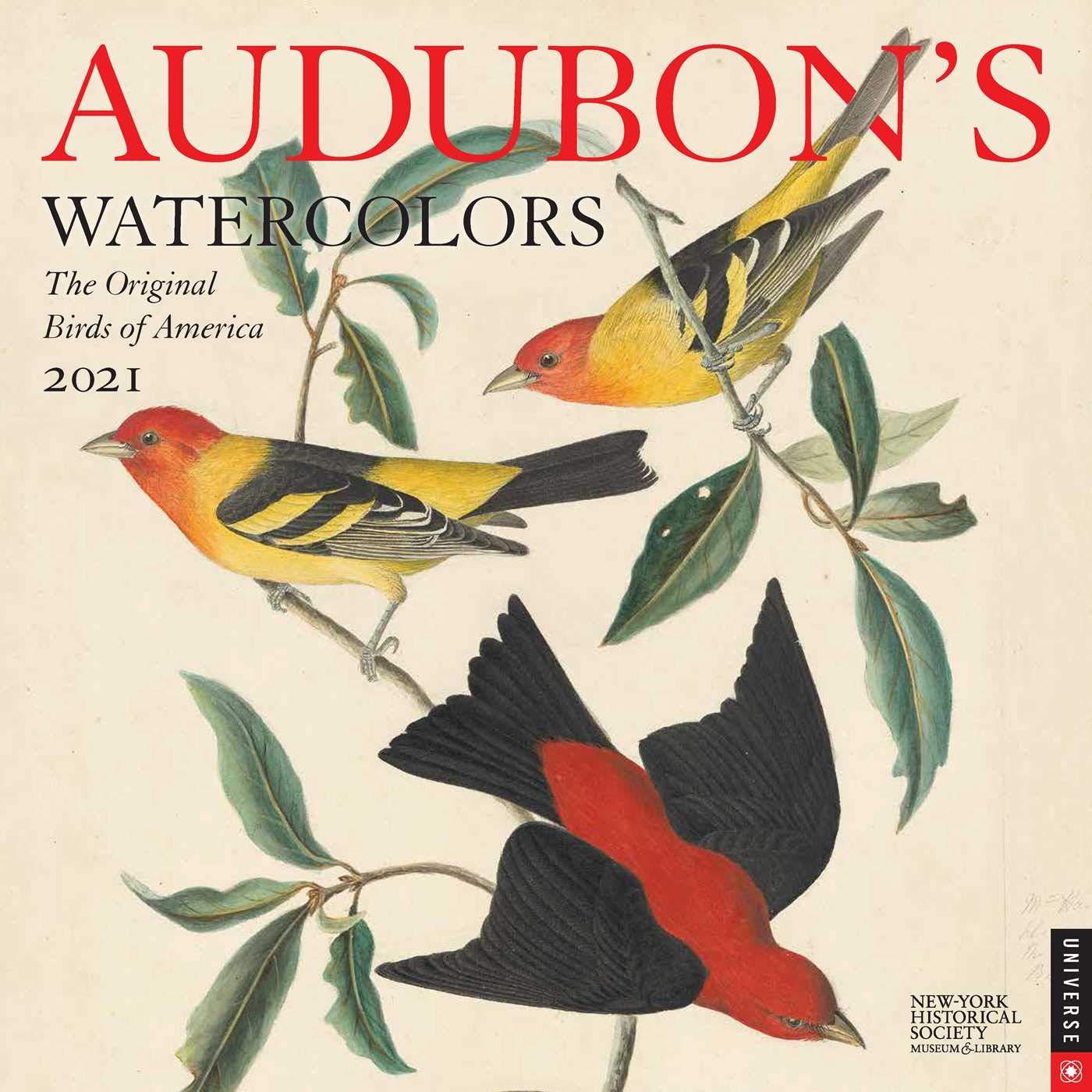 Audubon Bird Calendar 2021 Audubon's Watercolors 2021 Wall Calendar: The Original Birds of
