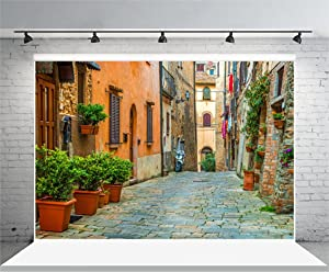 Laeacco 10x6.5ft Vinyl Backdrop Photography Background Italy Old Town Small Narrow Alley Street Landscape European Building Green Vine Children Adults Travel Theme Backdrop Photo Studio Props