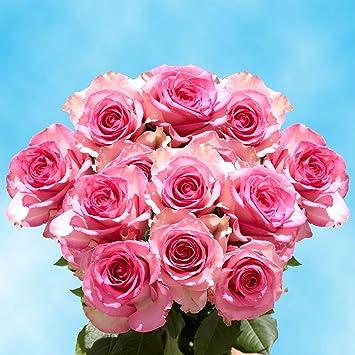 Amazon.com : GlobalRose 50 Rosas Rojas Para San Valentín- Envio de Flores Frescas. : Grocery & Gourmet Food
