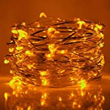 HAHOME Waterproof Led String Lights,33Ft 100 LEDs Indoor and Outdoor Starry Lights with Power Supply for Christmas Wedding and Party Decoration,Yellow