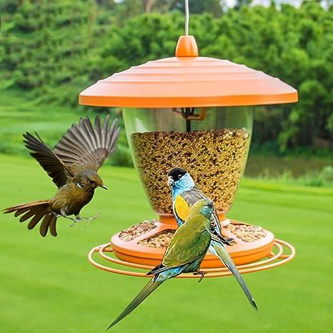 LFF.FF Alimentador Al Aire Libre Alimentador De Pájaros De Jardín Comedero para Pájaros Comedero para Pájaros Guía De Aves De Balcón Paloma Loro Observación De Aves: Amazon.es: Deportes y aire libre