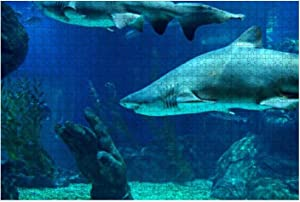 500 Piece Underwater Scene of Sand Tiger Shark in Aquarium Marine Aquarium Large Piece Jigsaw Puzzles for Adults Educational Toy for Kids Creative Games Entertainment Wooden Puzzles Home Decor