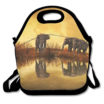 6284ea9a1953 Amazon.com - Sunmoonet Lunch Tote Bag, Large Lunch Bag, Thermos Big ...