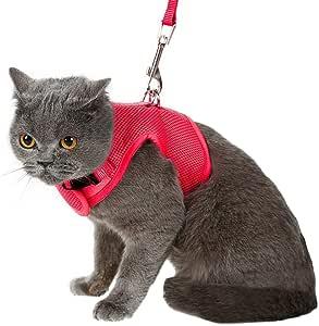 Arnés y correa para gato BINGPET, a prueba de escapes, arnés de malla tipo chaleco, ajustable y suave para pasear al gato.: Amazon.es: Productos para mascotas