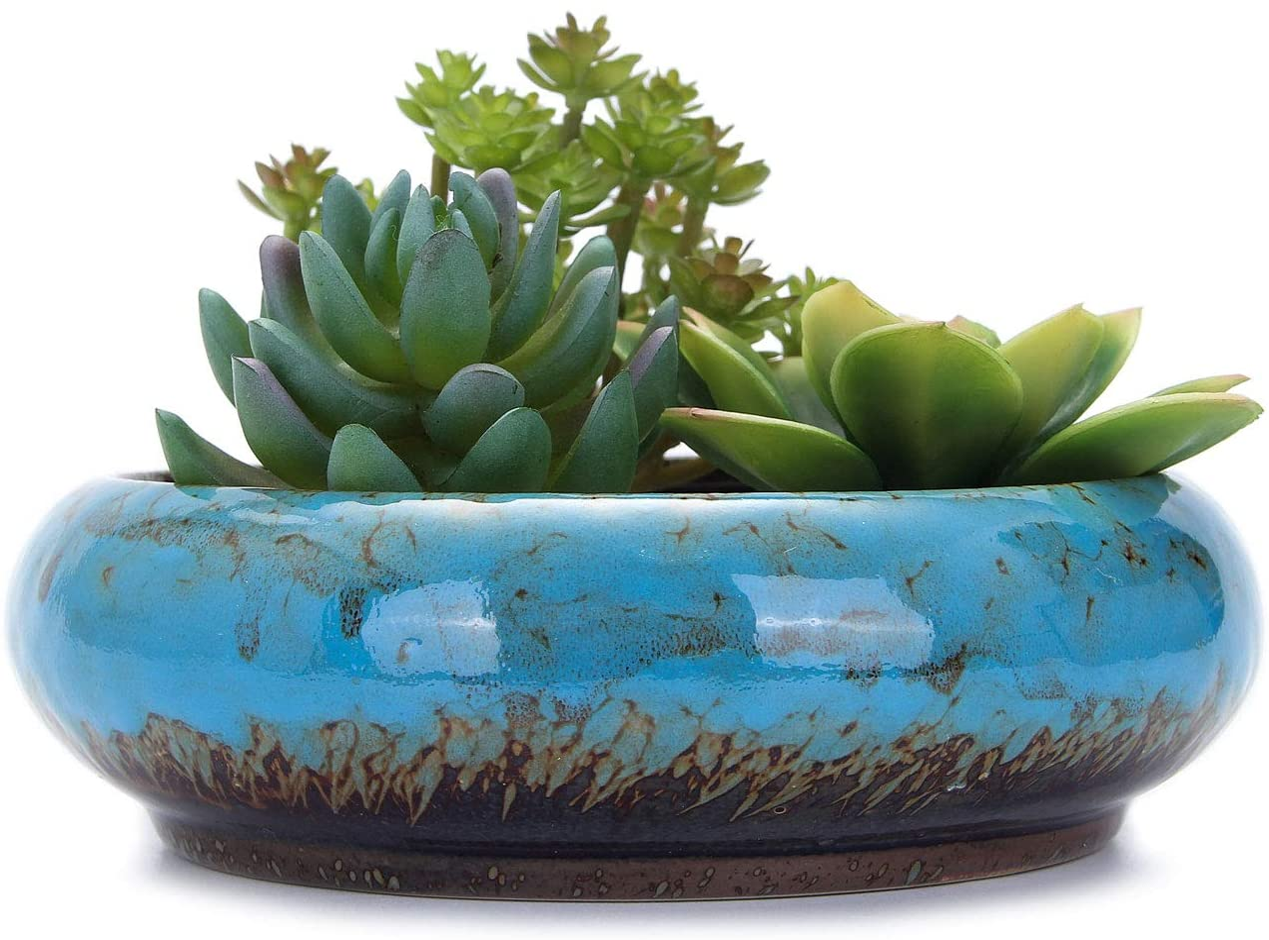 VanEnjoy 7.3 inch Round Large Shallow Succulent Ceramic Glazed Planter Pot