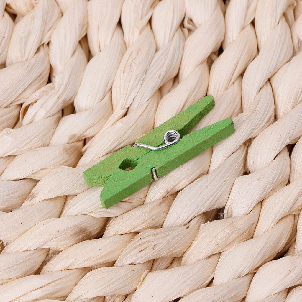 Rosa Runrain 100 St/ücke Mini Holz Handwerk Pegs 30mm Kunst Hochzeit H/ängende Foto Clips Kleidung Pins