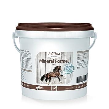 AniForte Mineral Fórmula 1 kg vitaminas minerales Caballos de Producto Natural para Caballos ID: 509 C 03: Amazon.es: Productos para mascotas