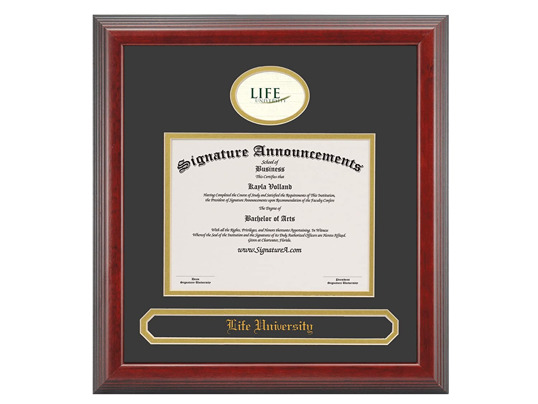 Professional//Doctor Sculpted Foil Seal /& Name Graduation Diploma Frame 16 x 16 Cherry Signature Announcements Life-University Undergraduate