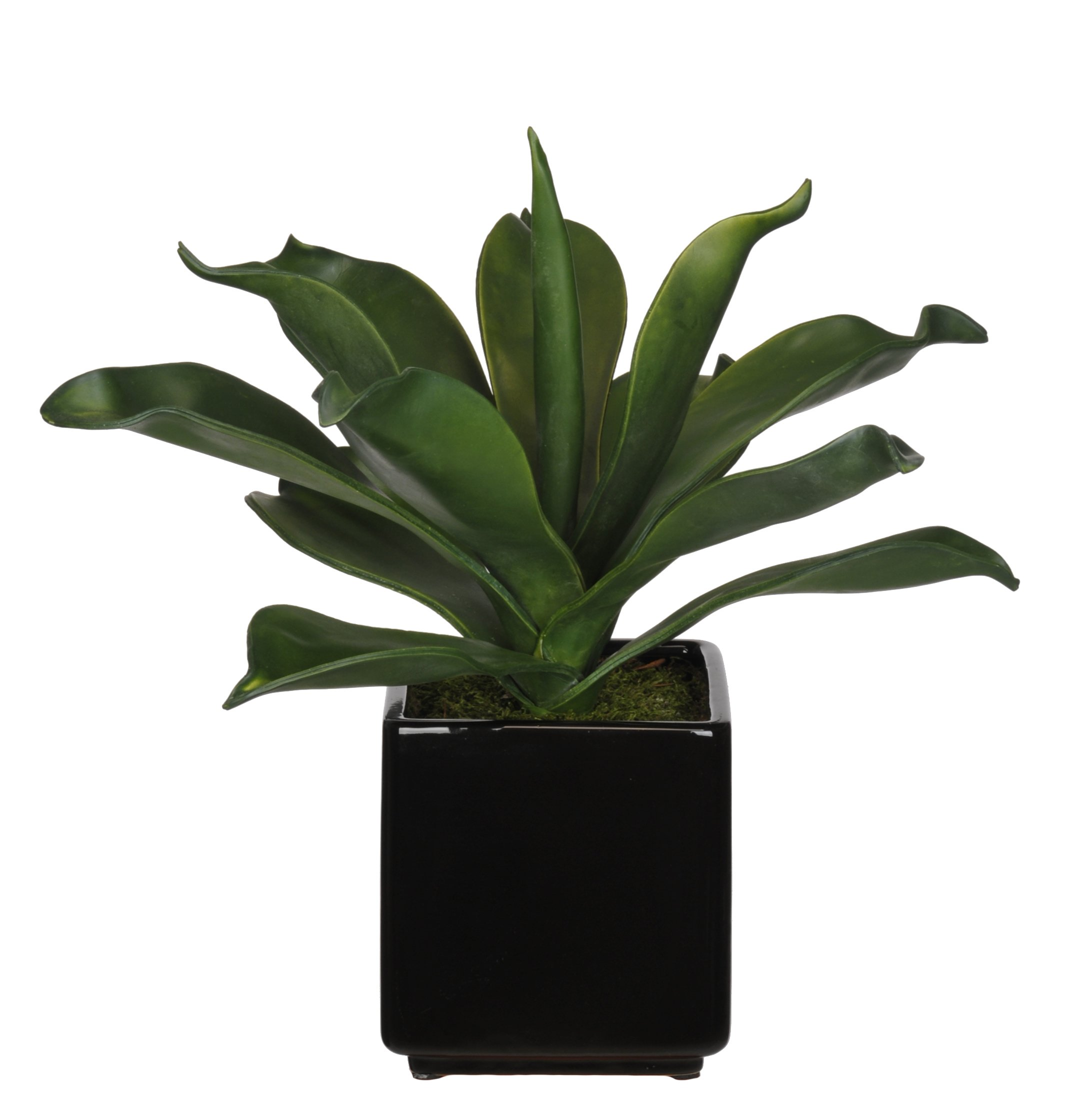 House-of-Silk-Flowers-Artificial-Agave-Succulent-in-Cube-Ceramic