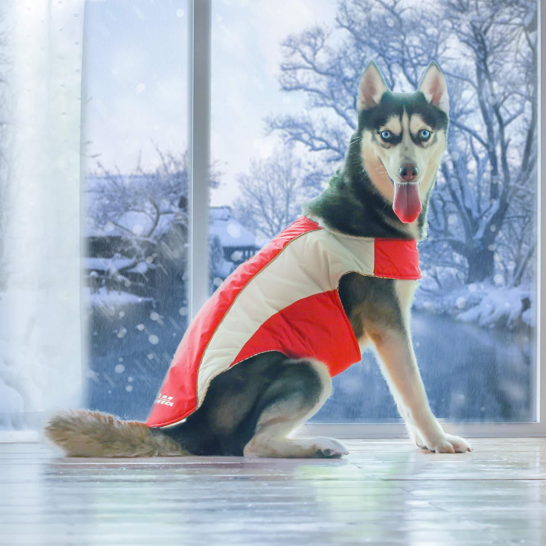 Red 3XL(Neck  26.5\ Red 3XL(Neck  26.5\ ThinkPet Outdoor Winter Dog Jacket Heat Reflecting Waterproof Reflective Warm Coat