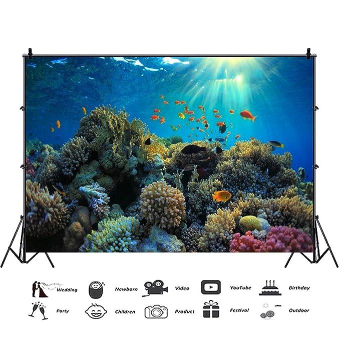 Cassisy 3x2m Vinilo Submarino Telon de Fondo Especies Marinas Arrecife de Coral Pez Tropical Rayo de Sol Fondos para Fotografia Party Infantil Photo Studio ...