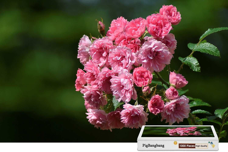 【公式ショップ】 pigbangbang、ハンドメイドintellectiv Games Photomosaic 19.6 Jigsawパズルボックス木製colorful- pink-flowers-briar-bokeh Photomosaic – 1000ピースジグソーパズル(29.5 X