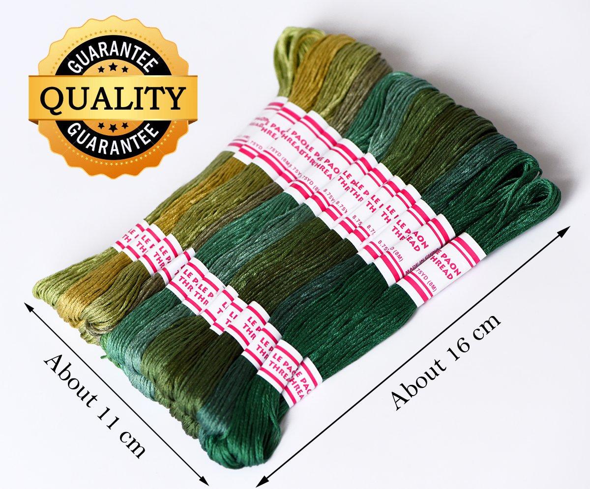 Amazon.com: LE PAON DMC Floss Pack, 24-Pack 8M Cotton thread, cross ...