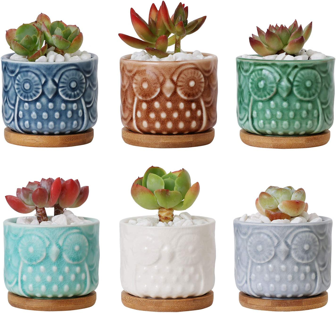 T4U 2.6 Inch Ceramic Owl Succulent Cactus Planter Pot Set with Bamboo Tray Full Color Set of 6, Home and Office Decoration Desktop Windowsill Bonsai Pots Gift for Gardener Wedding Birthday Christmas