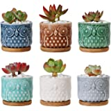 """T4U 2.6"""" Ceramic Owl Succulent Cactus Planter Pot Set with Free Bamboo Tray Full Color Set of 6, Home and Office Decoration Desktop Windowsill Bonsai Pots Gift for Gardener Wedding Birthday Christmas"""