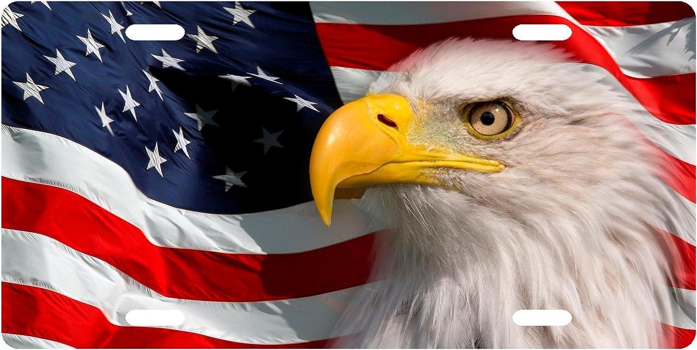 USA American Flag Eagle License Plate Frame Thin Top American Patriotic Metal TX