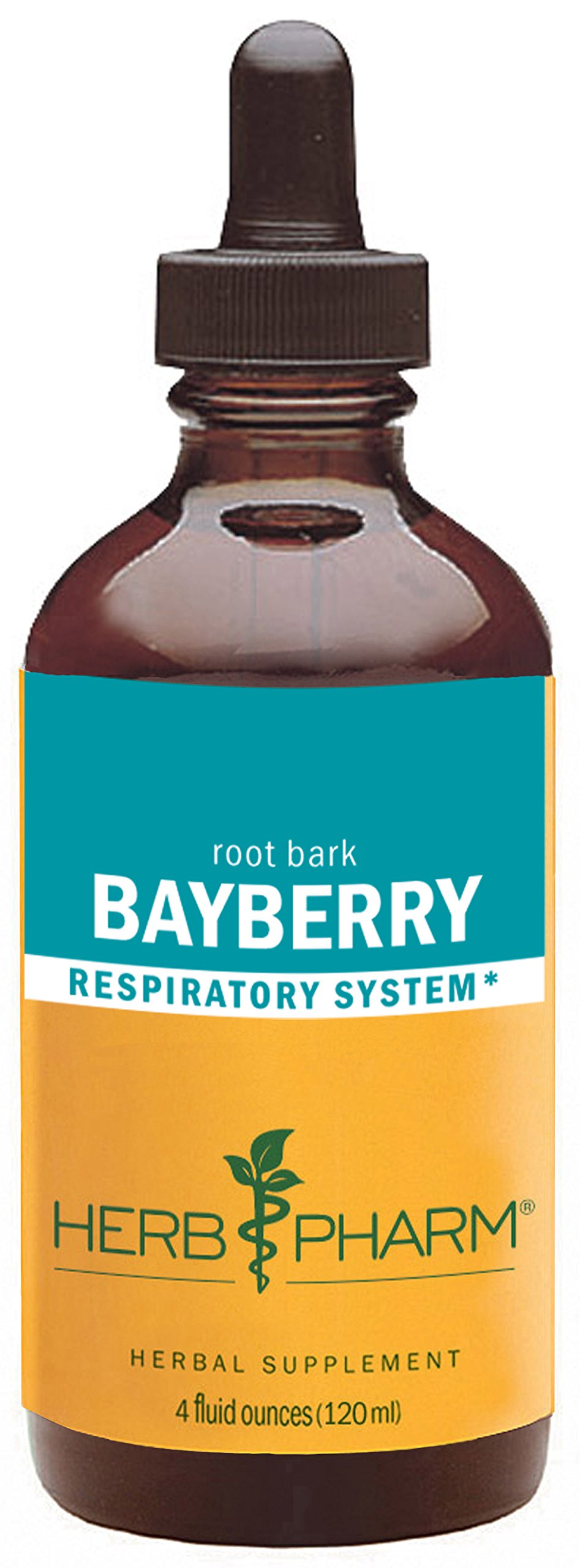 Herb Pharm Bayberry Liquid Extract for Respiratory System Support - 4 Ounce