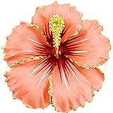 9f216f5af7f Amazon.com: Small Red Hawaiian Hibiscus Swarovski Crystal Flower Pin ...