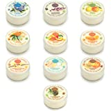 Pet House Mini Candle Sampler - 10 Pack of Top-selling Fragrances - Odor Neutralizing - 100% Natural SOY WAX - - 10-12 Hour Burn Time - Made in the USA - Amazing animal lover gift