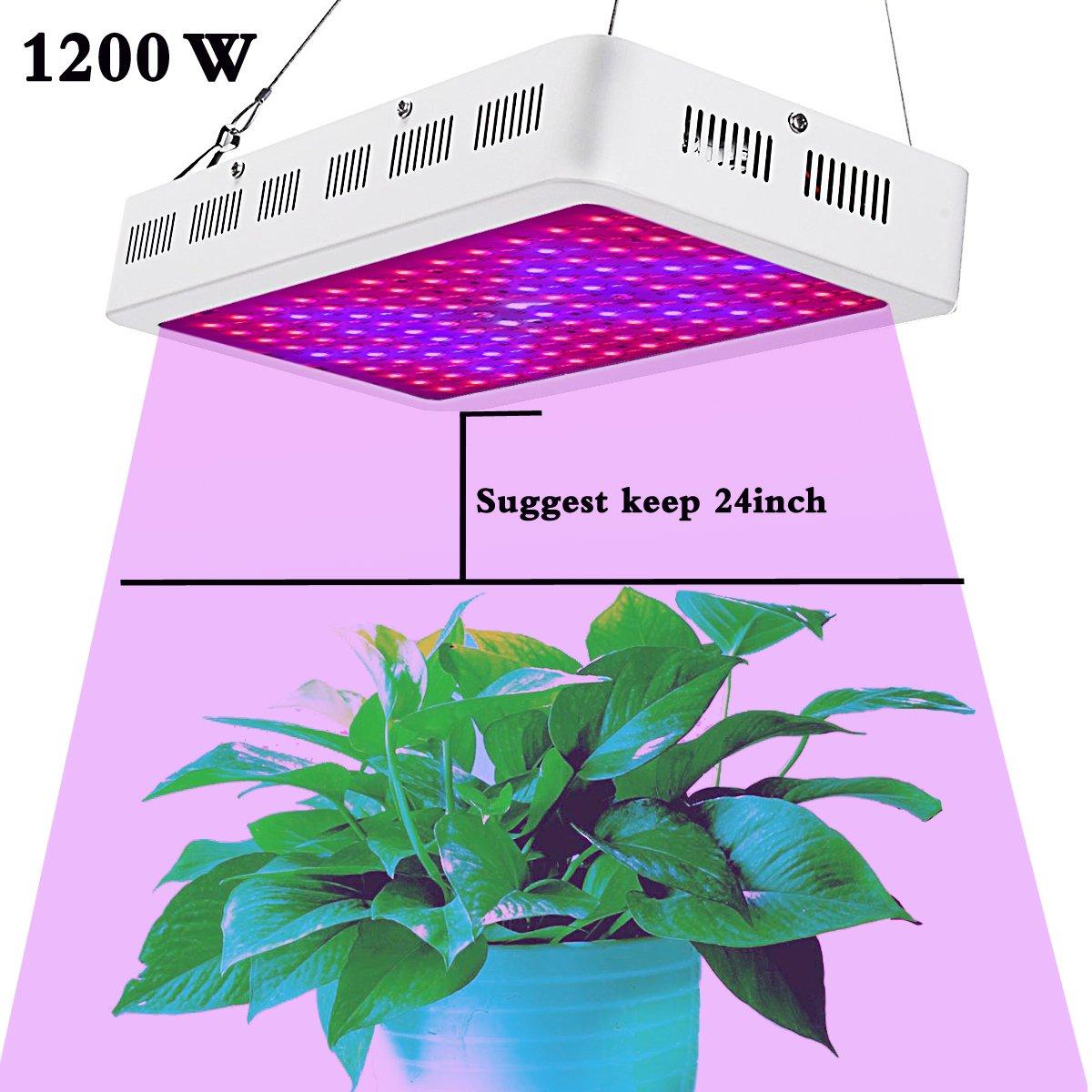 HollandStar LED Grow Light Full Spectrum 1000 Watt/1200W for Indoor Plants Veg and Flower (1200W)