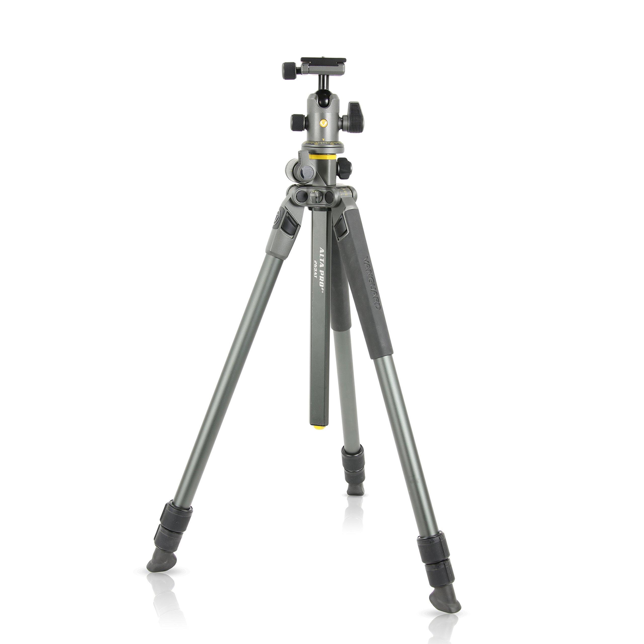 Vanguard Alta Pro 2