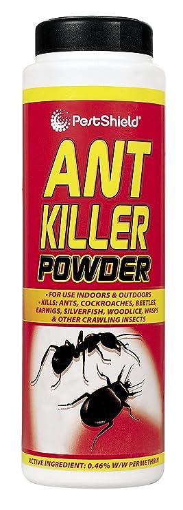 Chatsworth - 300 g Ant Killer Powder: Amazon.es: Jardín