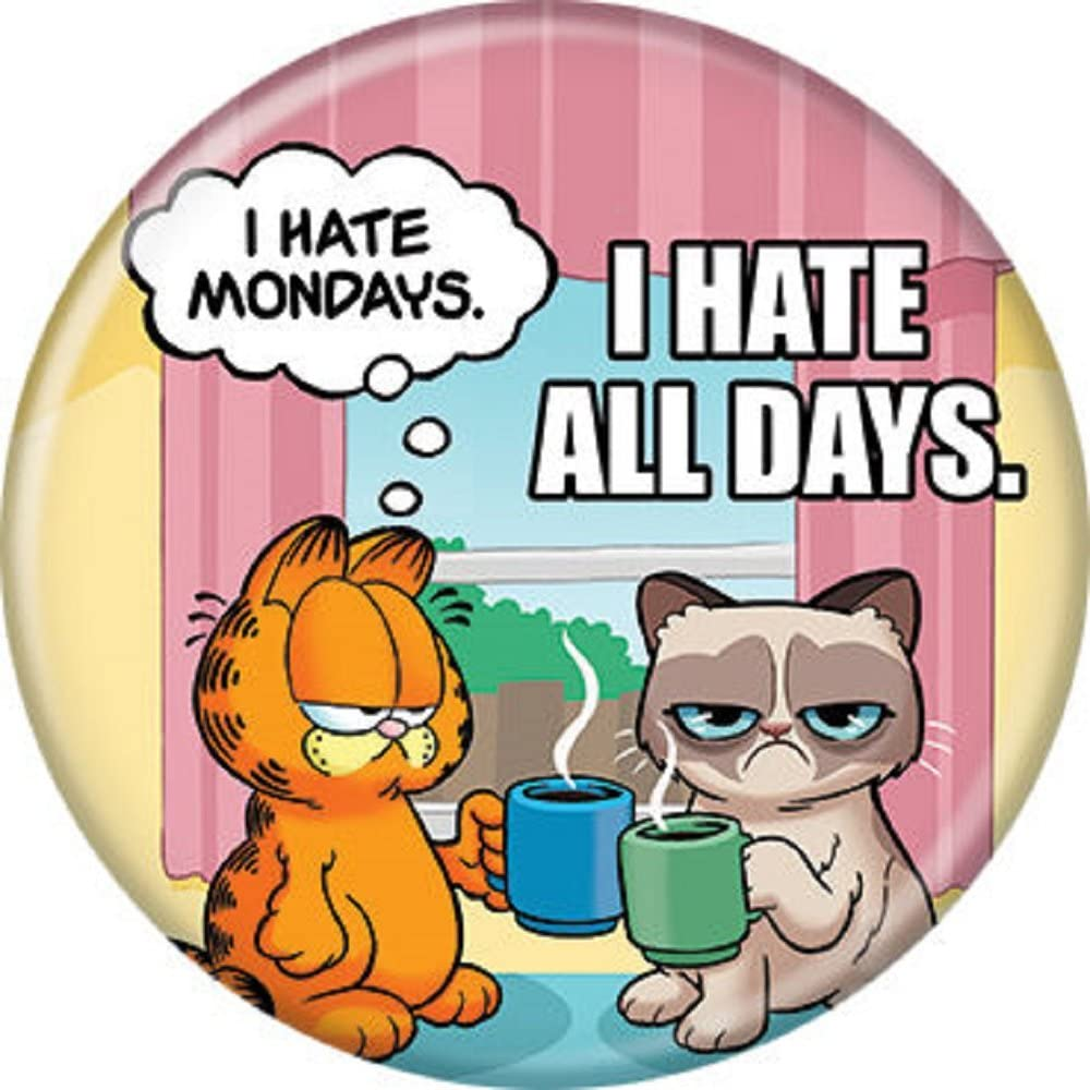 Amazon Com Grumpy Cat And Garfield Grumpy Garfield Hate All Pinback Button 1 25 Clothing