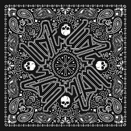 Graphic Face Motorcycle Mask (ZANheadgear BD101 Unisex-Adult Polyester Deluxe Bandanna with Black Paisley Graphics (Multicolor, 24