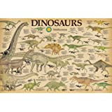 Amazon Price History for:Smithsonian- Dinosaurs Info Chart Poster 36 x 24in