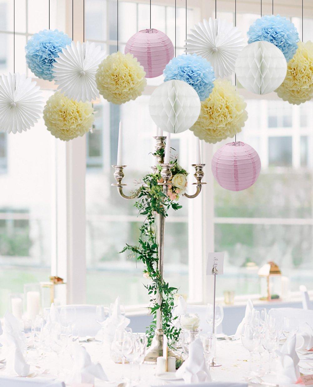 Tissue Paper Pom Pom Flowers Ball Party Decoration Kit for Birthday Wedding Celebration Assorted 01