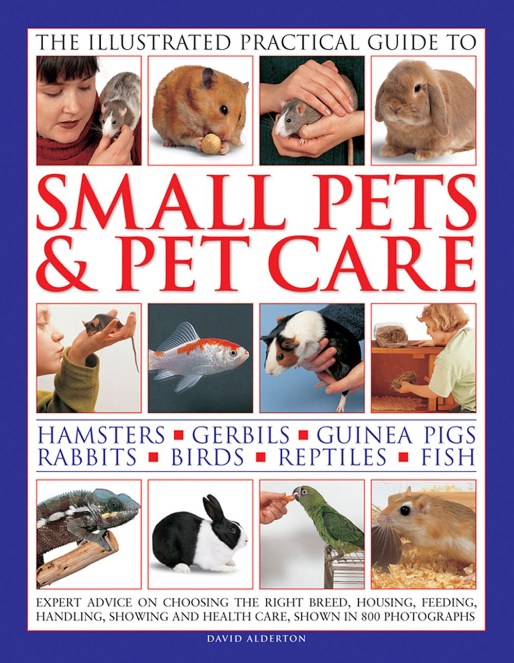 The Illustrated Practical Guide to Small Pets & Pet Care: Hamsters, Gerbils, Guinea Pigs, Rabbits, Birds, Reptiles, Fish
