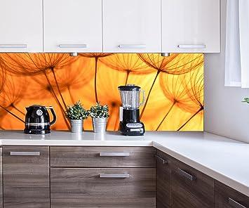 Kuchenruckwand Pusteblume Orange Nischenruckwand Spritzschutz Design