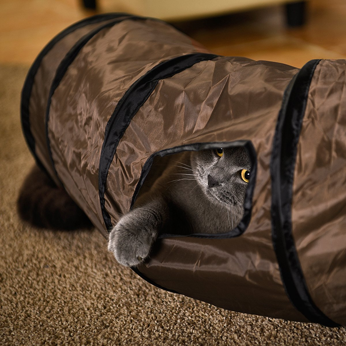 PAWZ Road Cat Toys Collapsible Tunnel for Rabbits Kittens Ferrets and Dogs