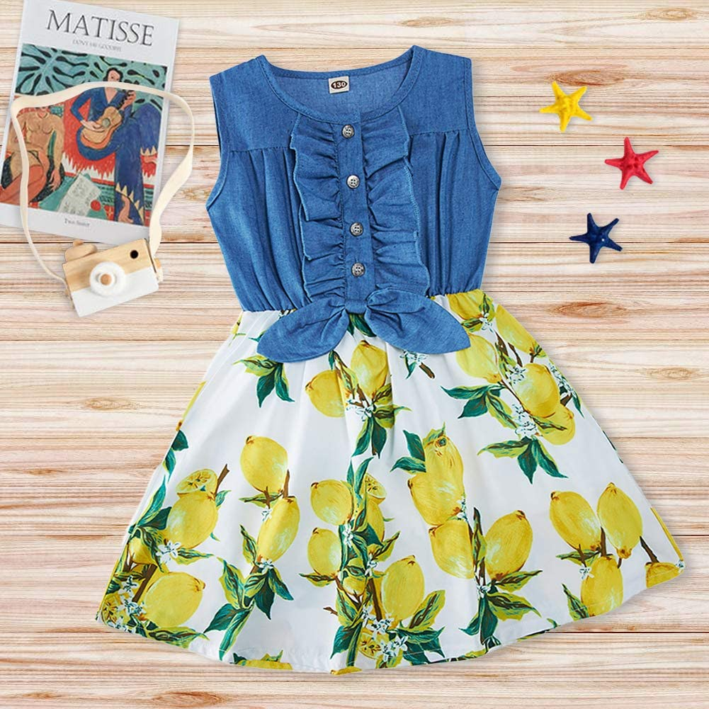 Enlifety Little Girls Princes Dresses Sleeveless Denim Tops Sundress Floral Print Tutu Skirts One-Piece/Outfit 2-9T